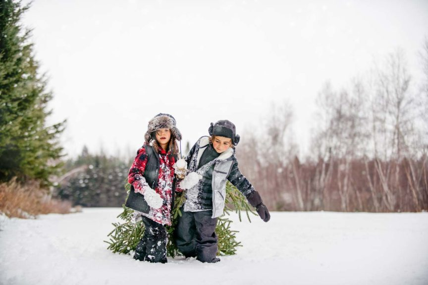 Carry Christmas tree with multi-generational family
