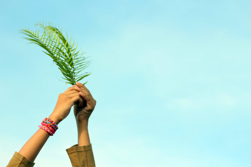 young woman hand holding the palm leaves and Nature Background