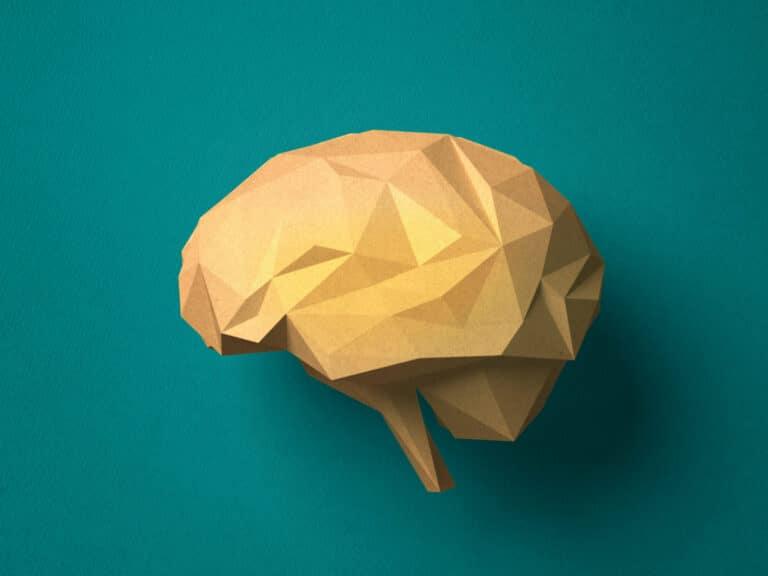 Paper-craft-Brain