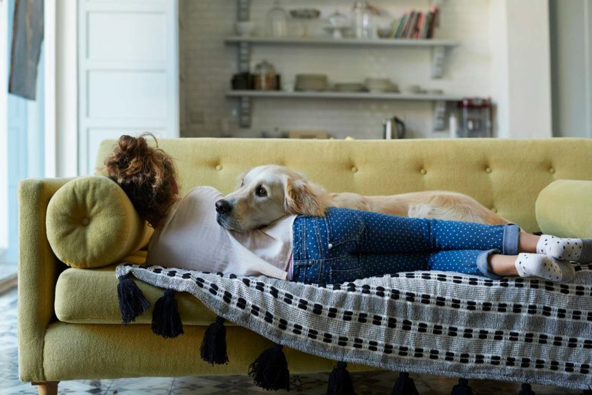 Girl sleeping on couch with her Golden Retriever dog