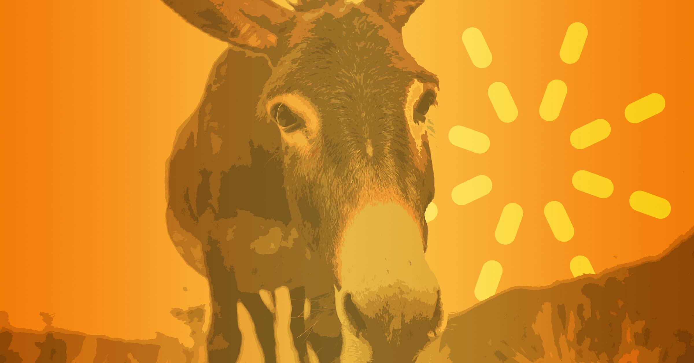 Donkey in the Story of Balaam