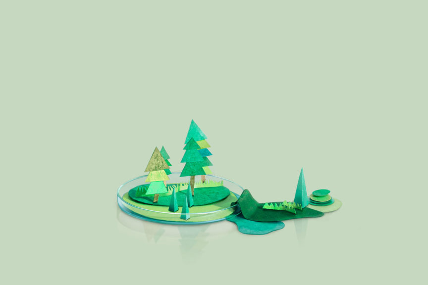 Paper Craft mountains and trees on a petri dish