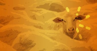 Parable of the Sheep and the Goats